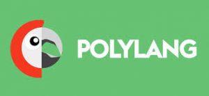 Polylang plugin de traducción